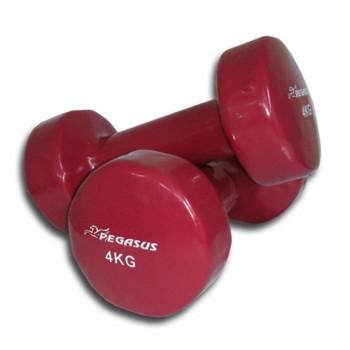 Pegasus® Βάρη χειρός βινυλίου ‑ 4 kg (τεμάχιο)